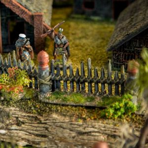 Tribal Stockade Small 2.2