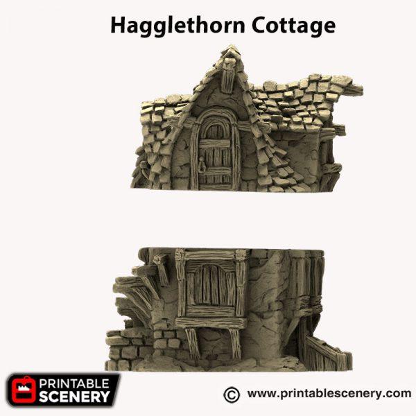3d printed Hagglethorn Cottage