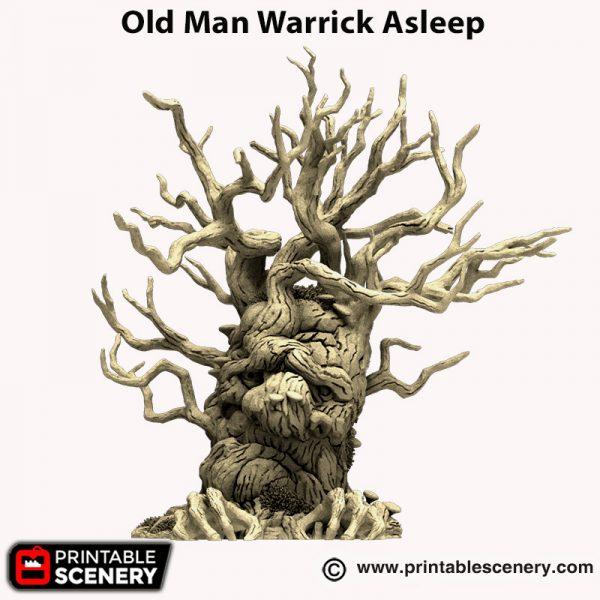 3d printed Old Man Warrick Asleep Hagglethorn Hollow