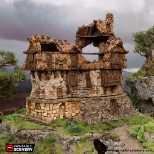 3D Printed Hagglethorn Hollow Ruined Lonmghouse Age of Sigmar Dnd Dungeons and Dragons frostgrave mordheim tabletop games kings of war warhammer 9th age pathfinder rangers of shadowdeep