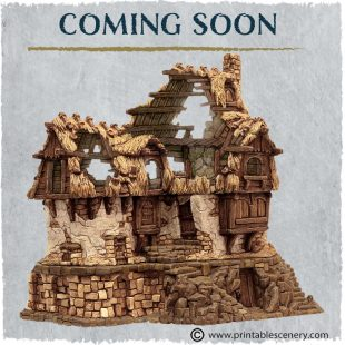 3D Printed Hagglethorn Hollow Ruined Longhouse Age of Sigmar Dnd Dungeons and Dragons frostgrave mordheim tabletop games kings of war warhammer 9th age pathfinder rangers of shadowdeep